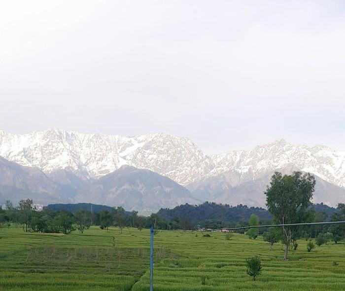 Местные жители делятся в сети снимками гор, которые теперь можно разглядеть.