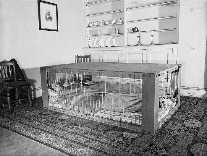 Британская пара спит в «убежище Моррисона», которое использовалось как защита от разрушающихся домов во время бомбардировок «Блиц» во время Второй мировой войны, март 1941 года.
