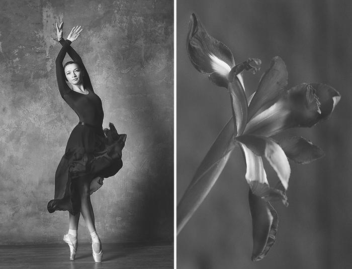 Грациозность танца балерины и нежность хрупкого цветка.