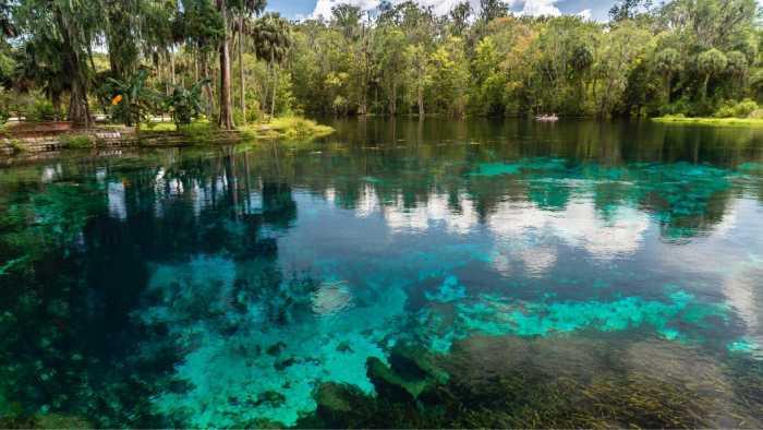 Сильвер Спрингс, штат Флорида, США.