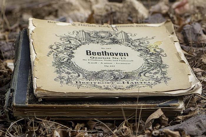 Современники понимали, что Бетховен - гений, пророк в мире музыки.