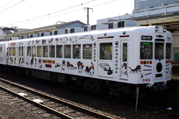 Поезд, созданный в честь Тамы.
