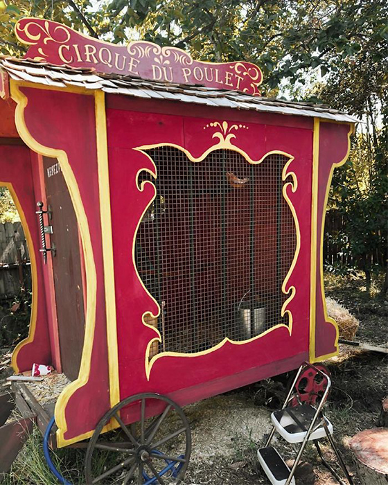 Цыплячий цирк. Правда он весьма напоминает карету Золушки.