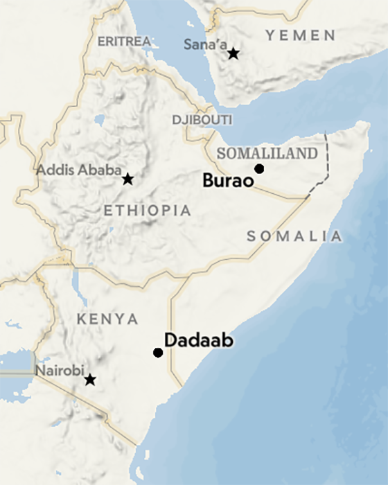 Карта Сомали и Сомалиленда.