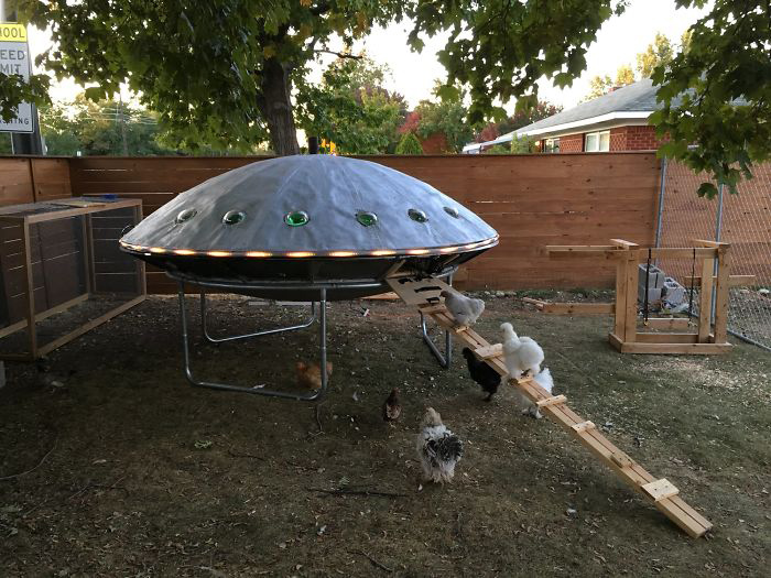 Курятник в виде летающей тарелки - это остроумно!