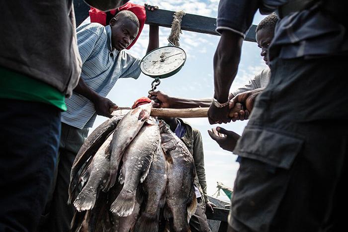 Вылов рыбы - это главный вид заработка на острове Мигинго.