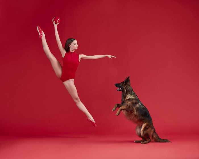 Неожиданная грациозность собаки под стать балерине.