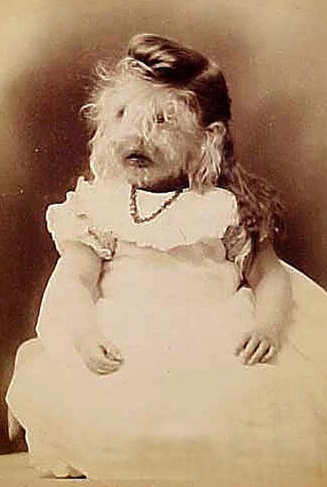 Элизабет Доэрти. / Фото: Wikimedia Commons