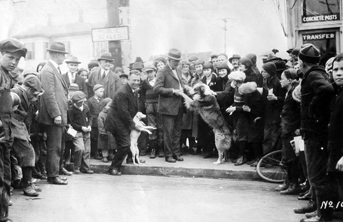 Жители Сильвертона радуются, увидев Бобби. Фото: Вейдс Крокетт.