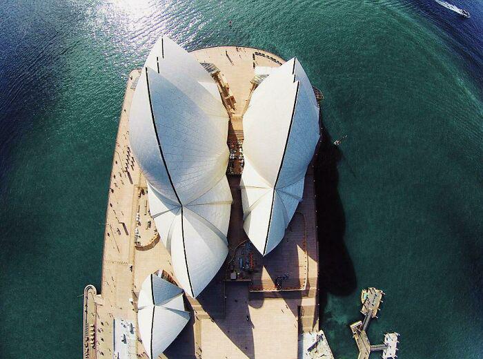 Сиднейский оперный театр сверху. / Фото: reddit.com/r/AlternateAngles