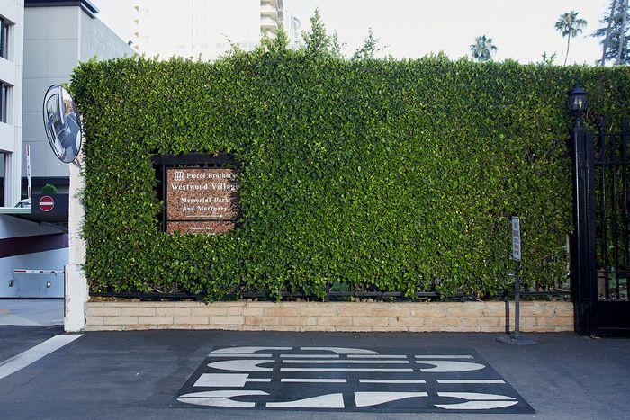 Многие мечтают занять место рядом с Мэрилин Монро. / Фото6: wsj.com