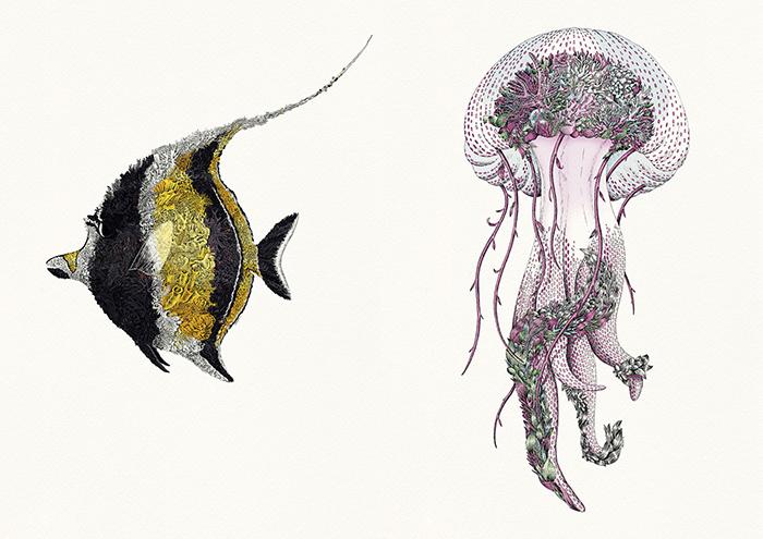 Доля прибыли от каждой проданной копии передаётся в пользу «Наследия Большого Барьерного рифа».