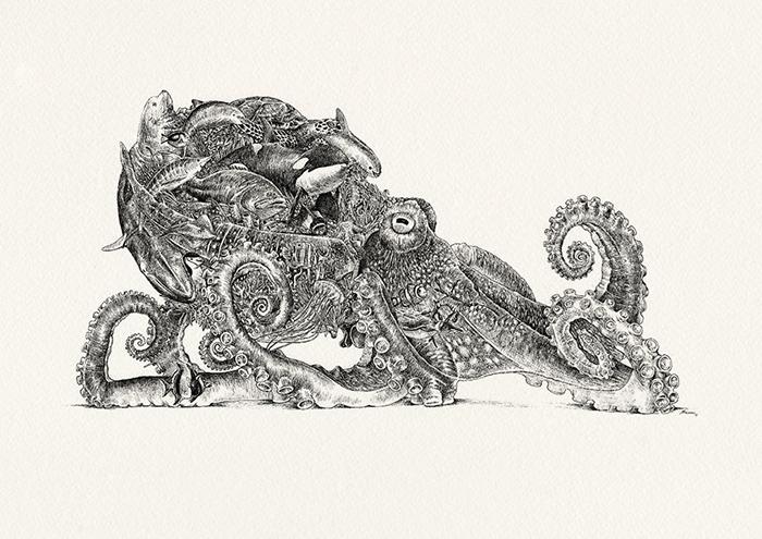 Осьминог и исчезающие виды морских животных. / Фото: mariniferlazzo.com.au