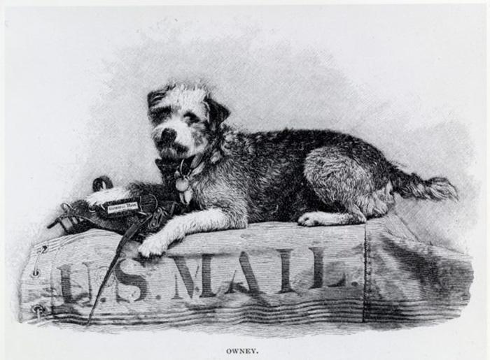 Изображение Оуни на любимом почтовом мешке. / Фото: Wikimedia Commons