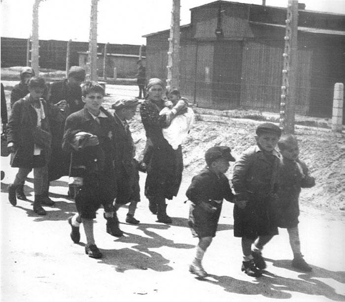 Еврейские дети, взявшись за руки, неосознанно идут навстречу гибели в газовых камерах Освенцима. / Фото: reddit.com