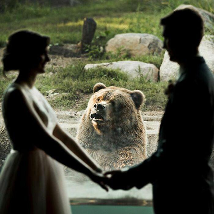 Свадьба в зоопарке и неожиданный гость, сделавший её незабываемой. / Фото: reddit.com