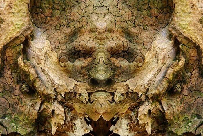 *Лесной дух*, выглядывающий из ствола дерева