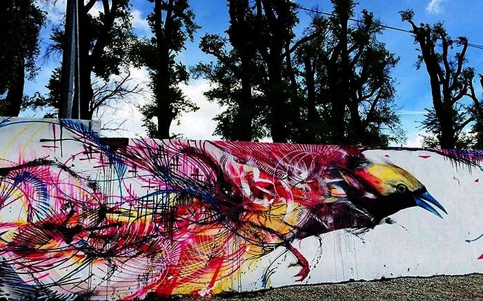 Разноцветные птицы на стенах и заборах