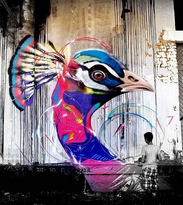Диковинные птицы с разноцветными перышками