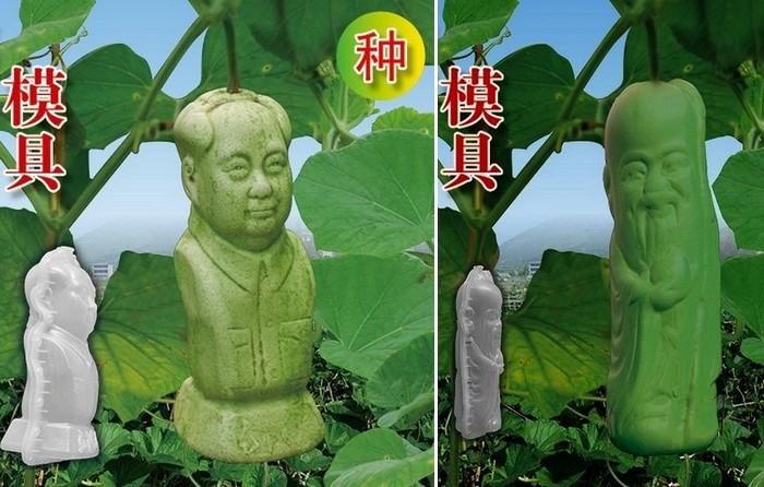 Дизайнерские овощи и фрукты из Китая