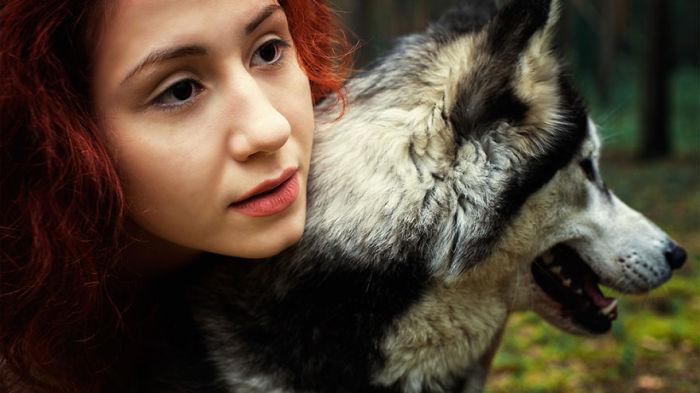 Девушка и хаски. Автор: Mari Nino.