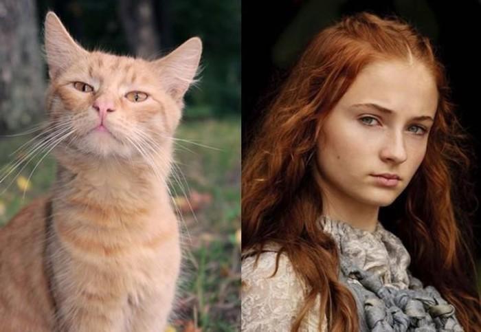 Высокомерная и наивная кошечка в роли рыжеволосой Сансы Старк.