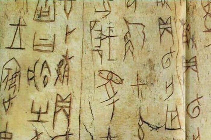 Надписи на костях оракула династии Шан. \ Фото: nypost.com.