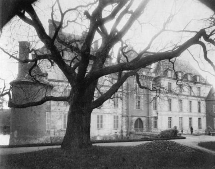 Замок Савини.