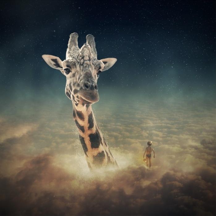 Небесный жираф. Автор: Even Liu.