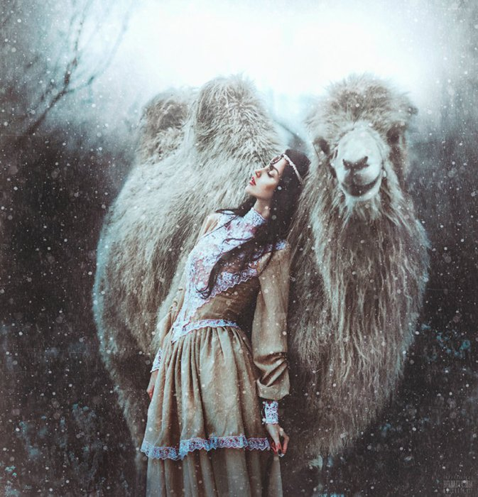 Зимняя сказка. Автор фото: Беляева Светлана.