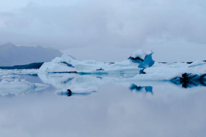 Голубые льды. Автор: Al Mefer.