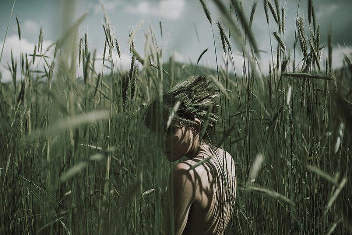 В поле. Автор фото: Алессио Альби (Alessio Albi).