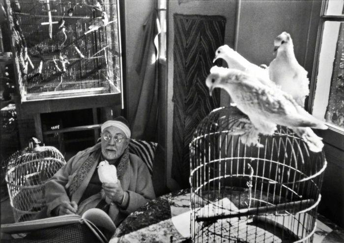 Анри Матисс у себя дома. Фото: Анри Картье-Брессон, Ванс, Франция, 1944 год. \ Фото: google.com.