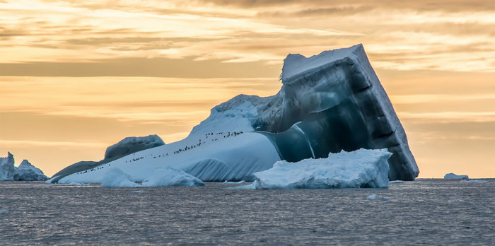 Замёрзший закат. Автор: Chris Watson.
