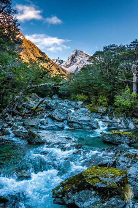 Ротеберн река (Routeburn River). Автор фото: Энтони Харрисон (Anthony Harrison).