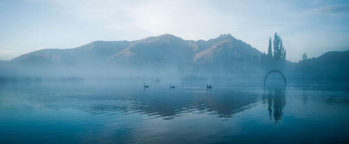 Лебединое озеро Квинстаун (Swan Lake Queenstown). Автор фото: Энтони Харрисон (Anthony Harrison).