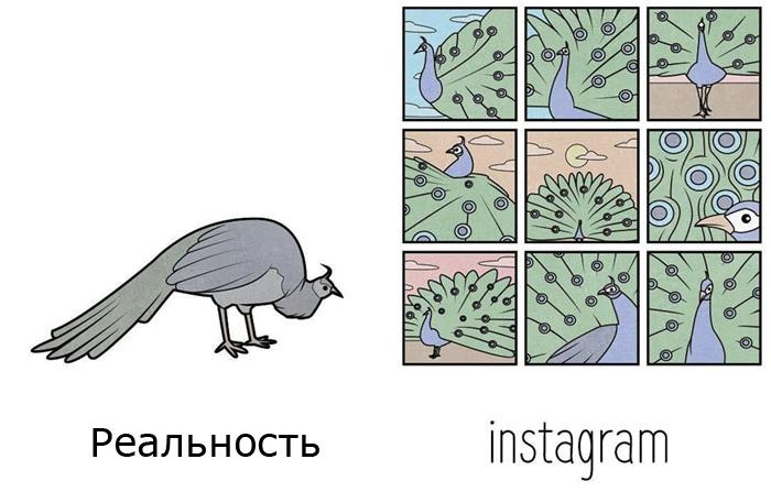 Суровая правда жизни. Автор: Антон Гудим.