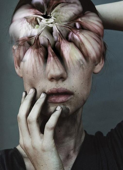 Опасное растение. Автор: Antonio Mora.