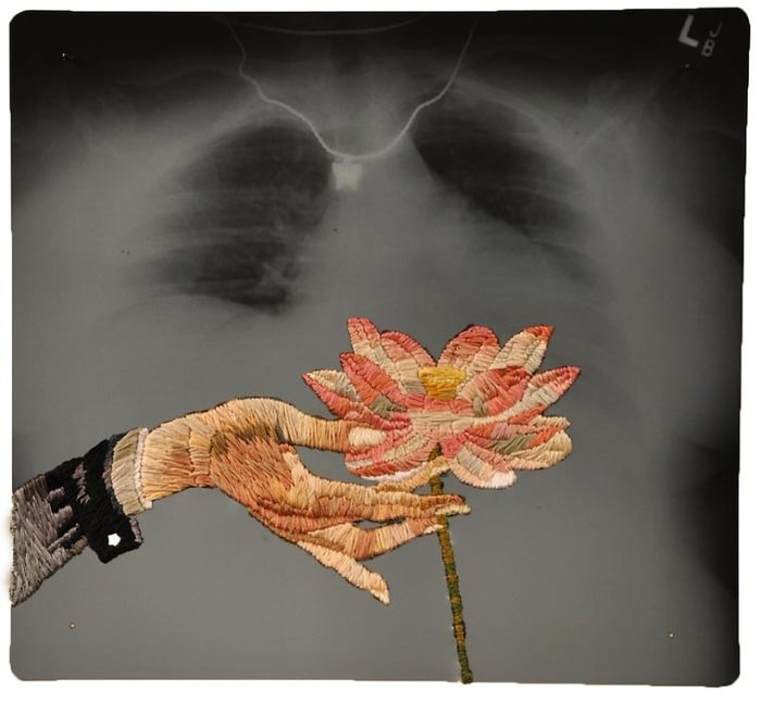 Цветок. Автор: Matthew Cox.