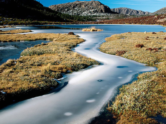 Заповедный остров Тасмания.