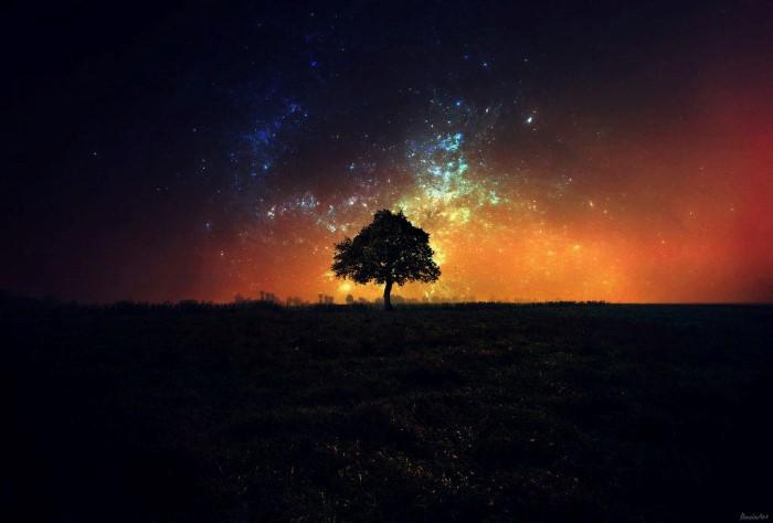 Звёздное небо. Автор: Barbara Florczyk.