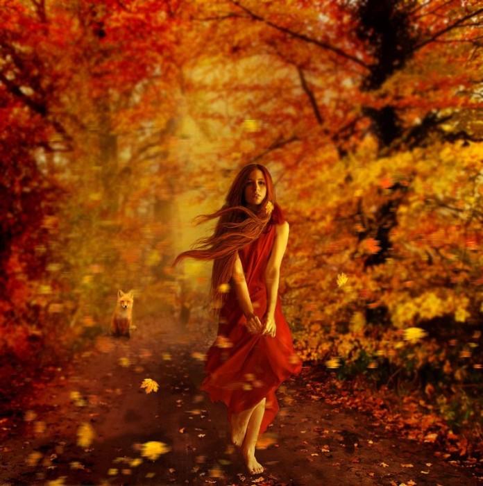 Красавица осень. Автор: Barbara Florczyk.