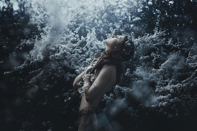 Волшебные миры. Земное свечение. Автор фото: Bella Kotak.