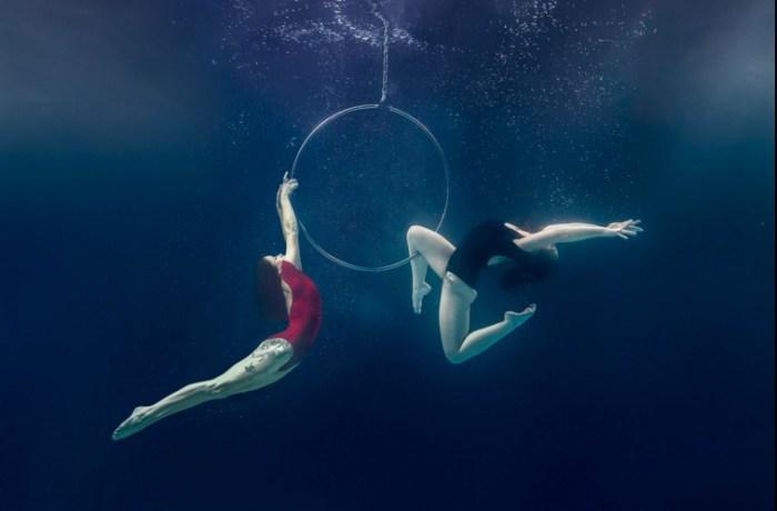 Подводный обруч. Автор фото: Брэтт Стэнли (Brett Stanley).