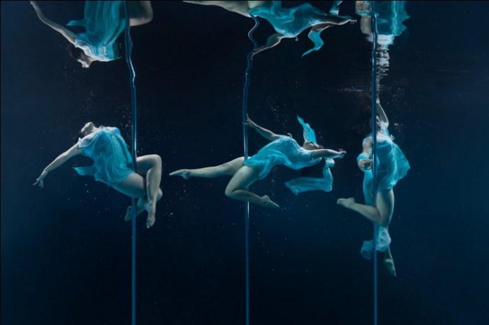 Подводный танец. Автор фото: Брэтт Стэнли (Brett Stanley).