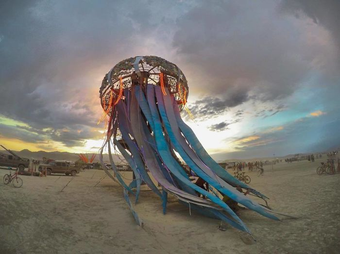 Гигантская радужная медуза.