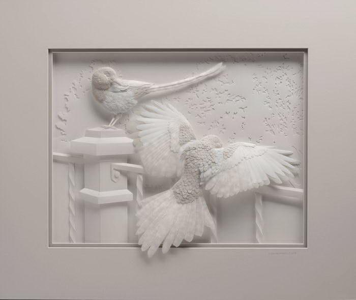 Белый голубь. Автор: Calvin Nicholls.