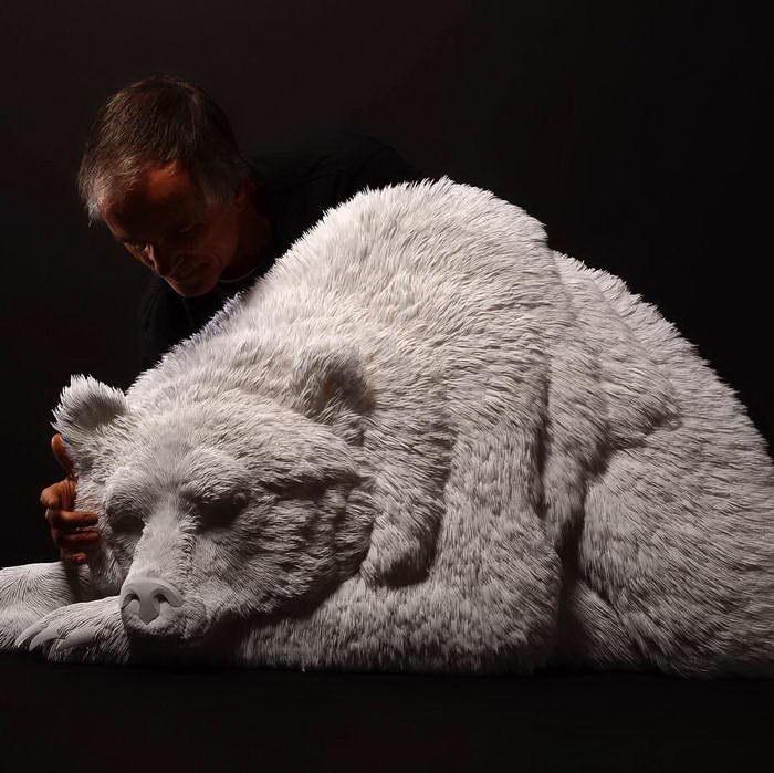 Медведь. Автор: Calvin Nicholls.