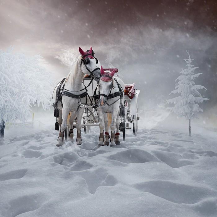 Сказочная зима. Фотохудожник  Караш Йонуц (Caras Ionut).