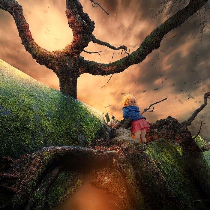 Загадочный лес. Фотохудожник  Караш Йонуц (Caras Ionut).